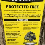 Public Notice of Protected Tree